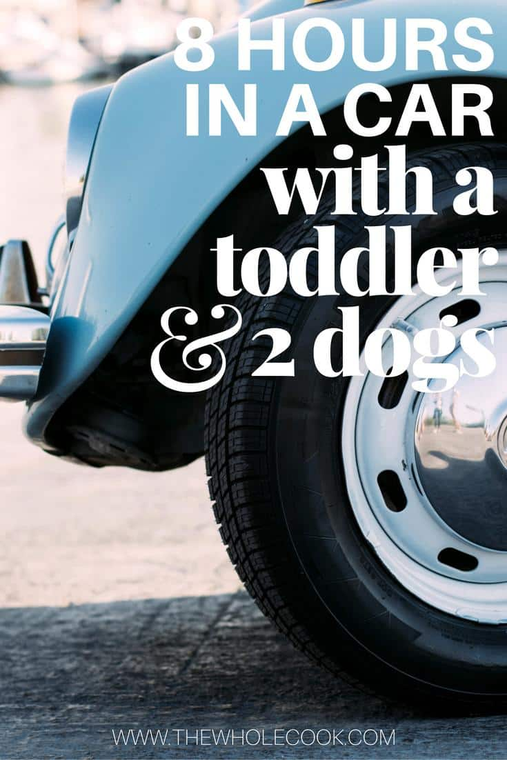 8 Hours in a Car with a Toddler & 2 Dogs