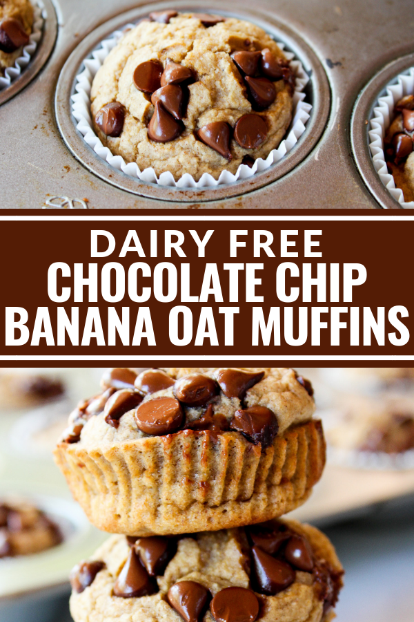 These Chocolate Chip Banana Oat Muffins taste just like a decadent chocolate chip banana bread. You won't believe they're dairy free and gluten free! Plus they're sweetened with honey instead of sugar!