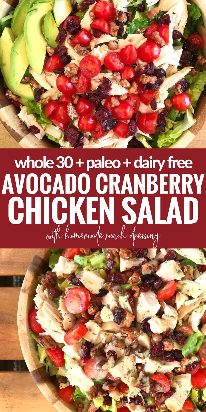 Avocado Cranberry Chicken Salad by The Whole Cook(1)